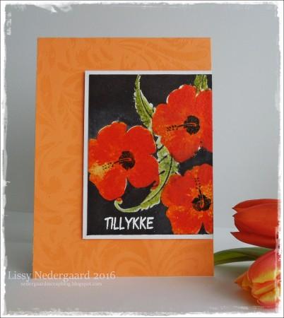 Layering Hibiscus Orange.....Layering Hibiscus OrangeDSCN3311