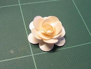 rose-12